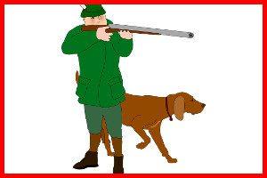 El cazador de caperucita roja